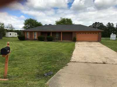 Single Family Home For Sale: 115 Wiley Dr