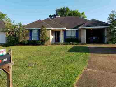 Byram Single Family Home For Sale: 4205 Gunar Dr