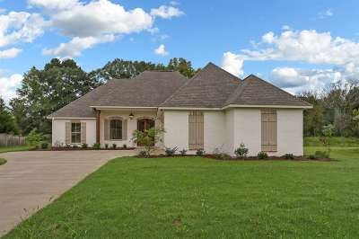 Canton Single Family Home For Sale: 109 Bridge Walk Dr