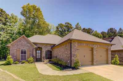 Brandon Single Family Home For Sale: 218 Duclair Ct