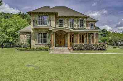 Flowood Single Family Home For Sale: 412 Choctaw Ln
