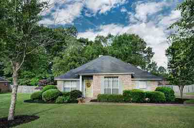 Brandon Single Family Home Contingent/Pending: 106 Afton Dr