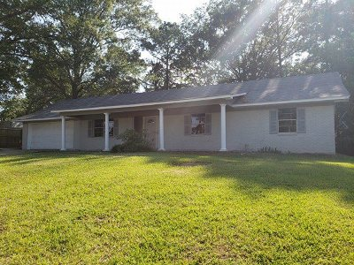 Pearl Single Family Home For Sale: 109 Belair Dr