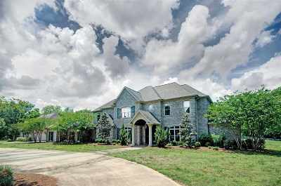 Brandon Single Family Home Contingent/Pending: 266 Dominion Pkwy