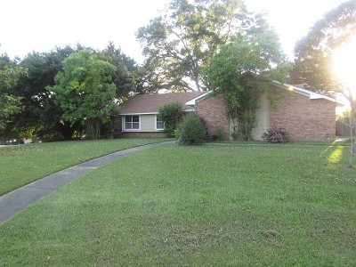 Hinds County Single Family Home For Sale: 222 Casa Urbana Dr