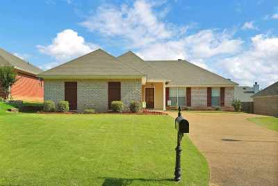 Brandon Single Family Home Contingent/Pending: 615 Briars Bend Dr