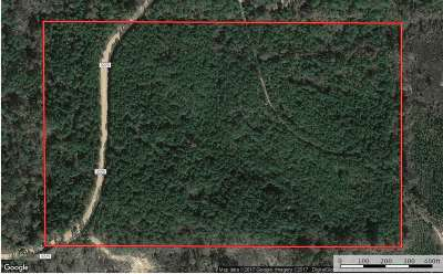 Attala County Residential Lots & Land For Sale: Attala RD County Road 3225