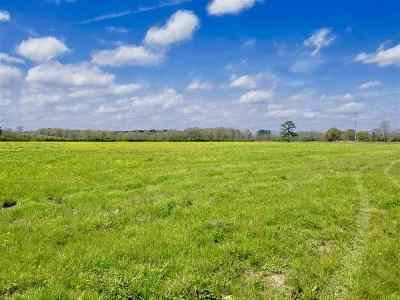 Residential Lots & Land For Sale: 787 Hwy 487 Hwy