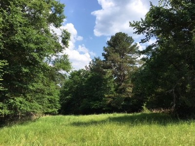 Madison Residential Lots & Land For Sale: Hwy 463