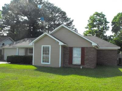 Byram Single Family Home For Sale: 8017 Lakeview Blvd