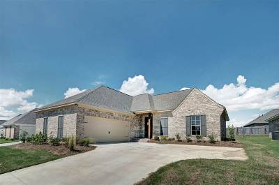 Canton Single Family Home For Sale: 222 Buttonwood Lane #lot 48