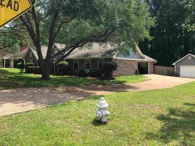 Brandon Single Family Home Contingent/Pending: 66 Sunline Dr
