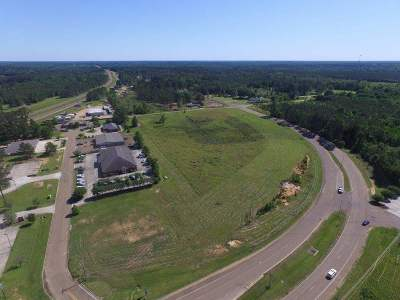 Lincoln County Commercial For Sale: 1338 Brookway Blvd