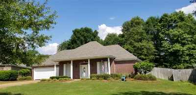 Canton Single Family Home For Sale: 101 South Ct