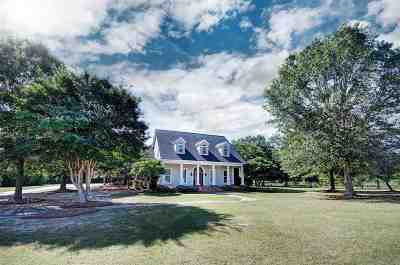 Madison MS Single Family Home For Sale: $455,000