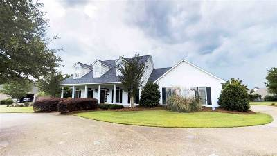Ridgeland Single Family Home For Sale: 221 Richardson Rd
