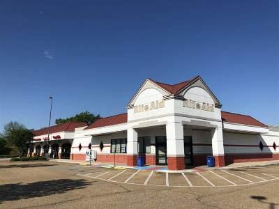 Madison Rental For Rent: 1073 N Highway 51 Hwy