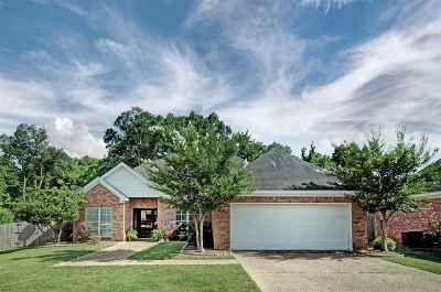 Brandon Single Family Home Contingent/Pending: 544 Will Dr