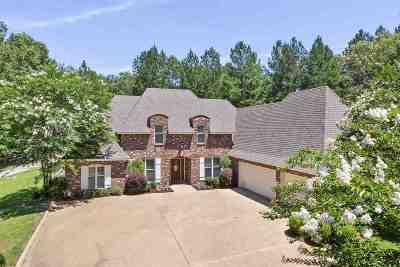 Brandon Single Family Home Contingent/Pending: 739 Westerly Dr