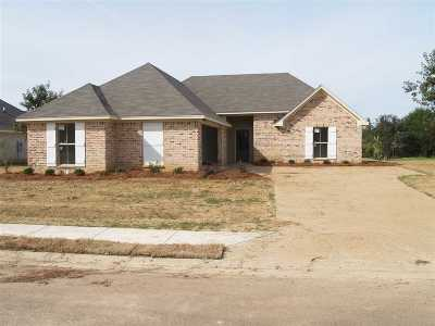 Canton Single Family Home For Sale: 113 Bankside Dr