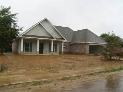 Canton Single Family Home For Sale: 109 Bankside Dr