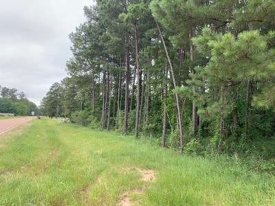 Rankin County Commercial For Sale: Highway 25