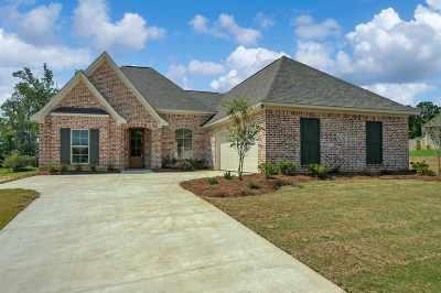 Brandon Single Family Home For Sale: 203 Lyle Cir