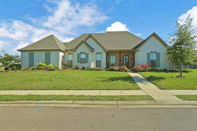 Flowood Single Family Home For Sale: 240 Grace Dr