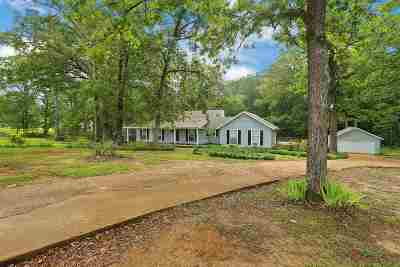 Byram Single Family Home For Sale: 6124 Terry Rd
