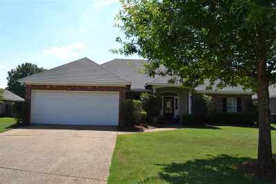 Canton Single Family Home For Sale: 101 Southwood Dr