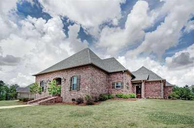Brandon Single Family Home For Sale: 641 Prosperity Pl