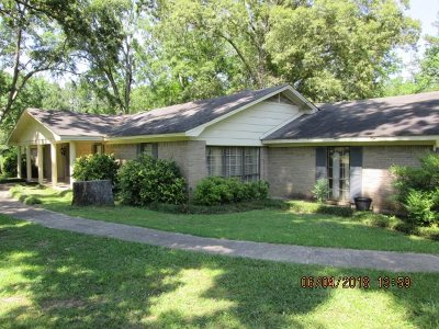 Leake County Single Family Home For Sale: 508 Debra St