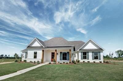 Brandon Single Family Home For Sale: 513 Forest Glen Dr