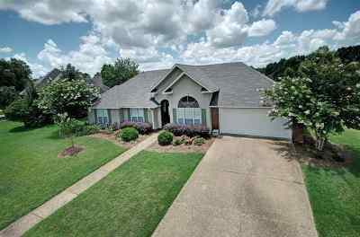 Brandon Single Family Home Contingent/Pending: 515 Brighton Cir