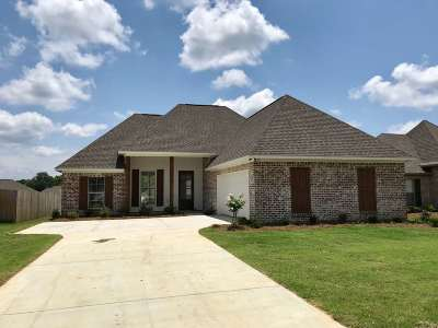 Canton Single Family Home For Sale: 217 Buttonwood Lane