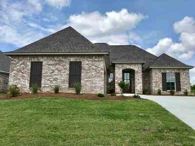 Canton Single Family Home For Sale: 216 Buttonwood Lane