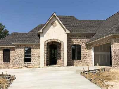 Brandon Single Family Home For Sale: 517 Carrington Dr