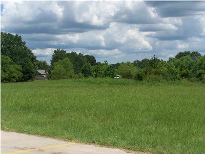 Madison Residential Lots & Land For Sale: 123 Highway 51