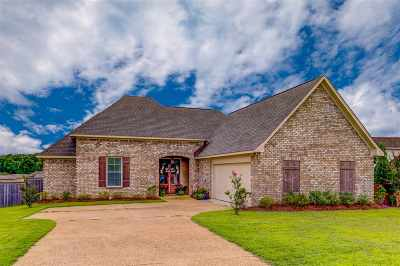 Clinton Single Family Home For Sale: 108 Oak Meadow Dr