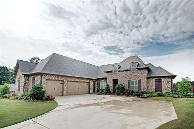 Brandon Single Family Home Contingent/Pending: 504 Sykes Cv