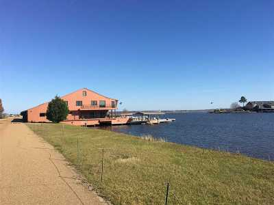 Ridgeland Rental For Rent: 157 #27 Dyke Rd