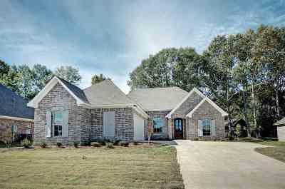 Canton Single Family Home For Sale: 144 Sweetbriar Cir