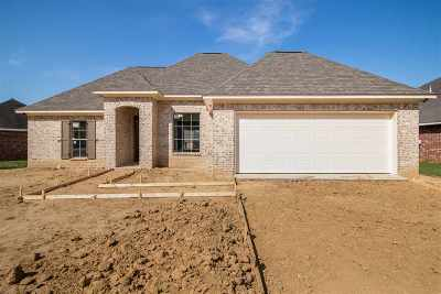 Byram Single Family Home For Sale: 1113 Bullrun Dr
