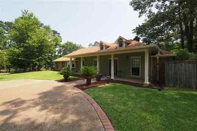 Rankin County Single Family Home For Sale: 501 Holly Trail