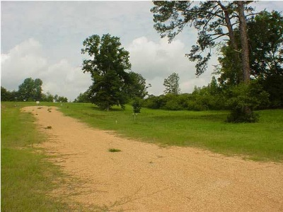 Simpson County Residential Lots & Land For Sale: Lakeview Cir