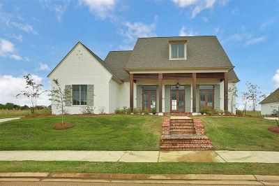 Madison Single Family Home For Sale: 342 Lake Village Dr