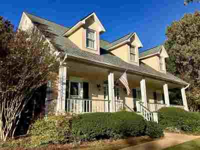 Brandon Single Family Home For Sale: 211 W Armistead Dr
