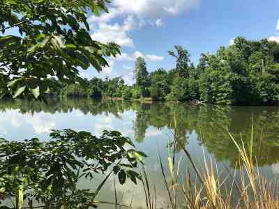 Residential Lots & Land For Sale: 600 Canton Dr