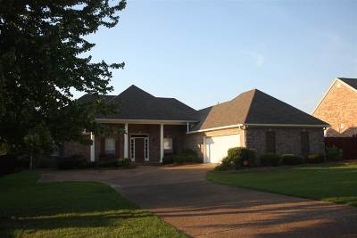 Single Family Home For Sale: 213 Providence Dr