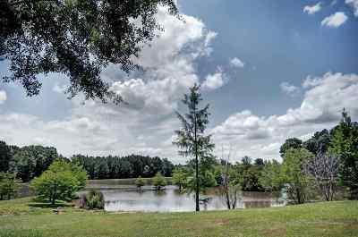 Rankin County Single Family Home For Sale: 125 Cedar Creek Rd